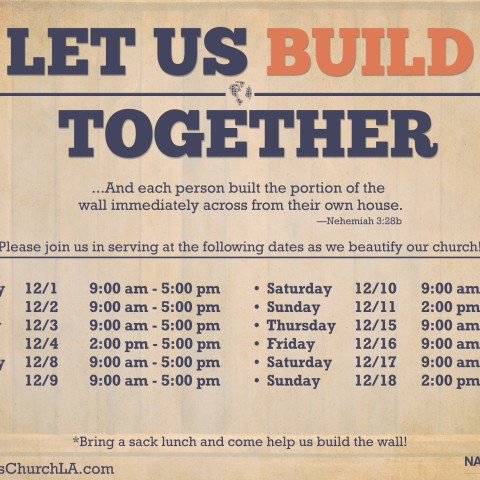 Build the Wall Flyer